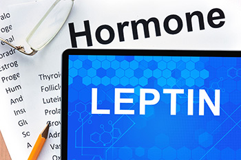 Leptin and Appetie